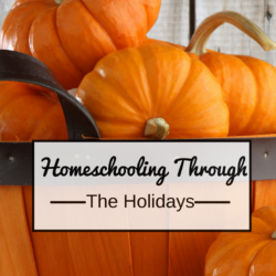 Homeschooling and the holidays! How to survive!
