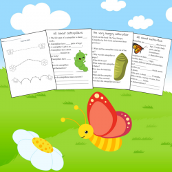 butterfly lesson pack