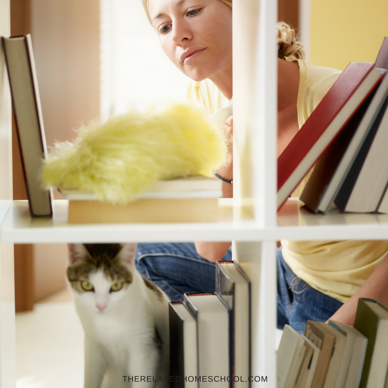 Best Ways to Clean and Organize Your Bookshelves square