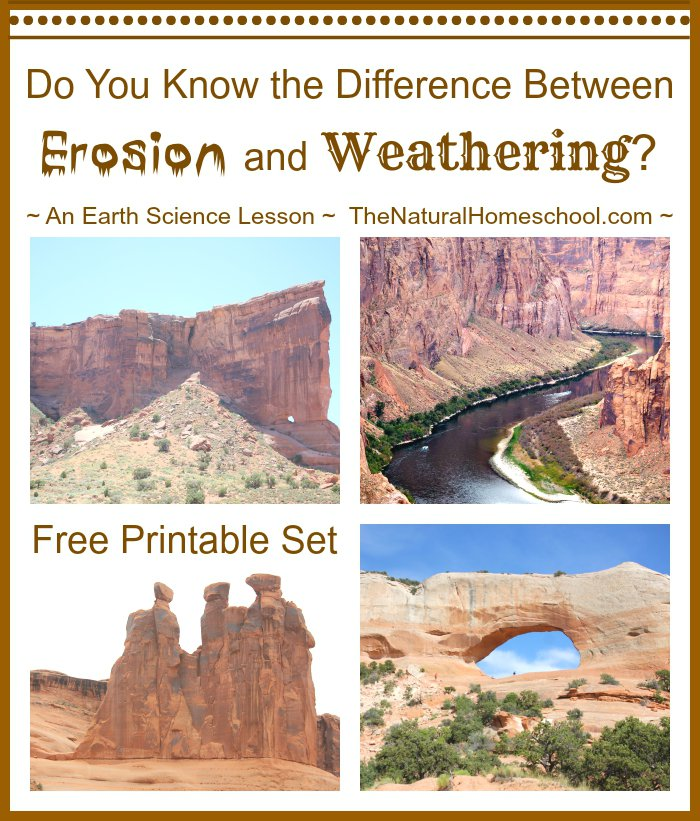 Free printable! All about weathering vs Erosion!