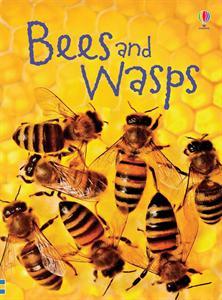 0004667_bees_and_wasps_ir_300