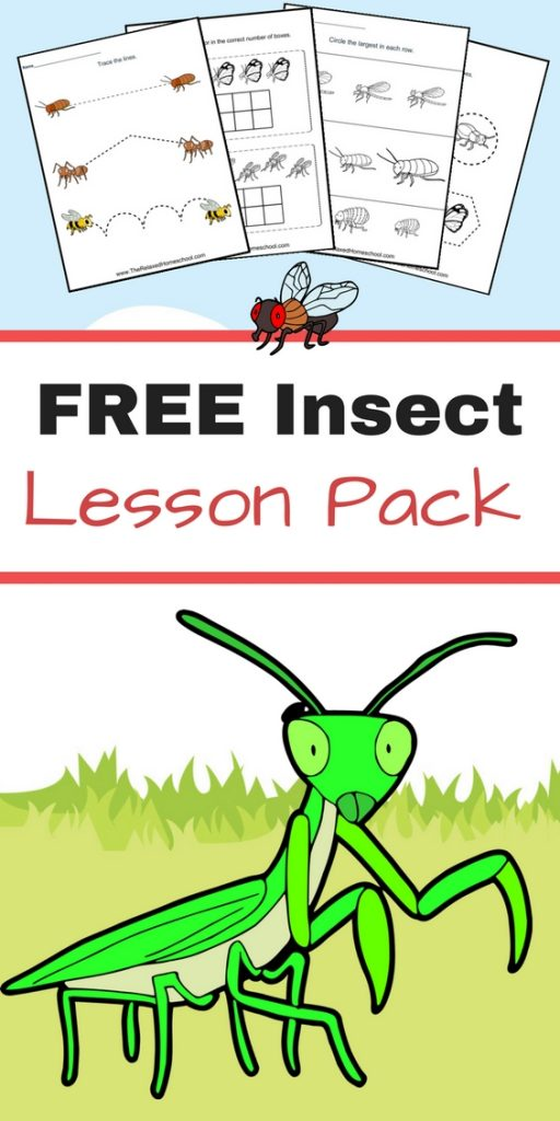 together with  likewise insects worksheets free   View and Print Your Bug Matching Worksheet further Insects at EnchantedLearning moreover Insect Crossword Old Version Worksheets About Insects For 3rd Grade further Which one is not an insect  worksheet     Science   Social besides  as well insect worksheets – oscarbyrne club as well Kindergarten Free Insects Worksheets Insect Worksheets For also Insects Worksheets For Kindergarten Pdf Insect Math additionally insects worksheets likewise Insectme With Pictures Math Worksheets Insects Matching4 For additionally Bug Worksheets Insect Math For Kindergarten Preers Insects moreover free insect worksheets besides Free Insect Worksheets  Great for elementary students likewise Pre Insect Worksheets The best worksheets image collection. on worksheets on insects for kindergarten
