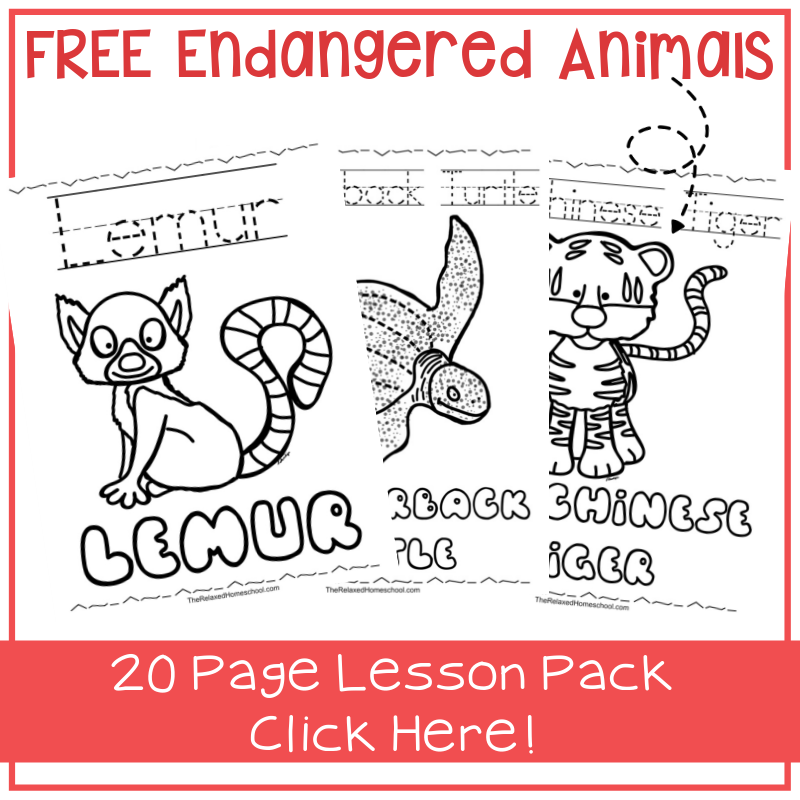 Endangered Animals Coloring Pages: Animals from North America, the ... | 800x800